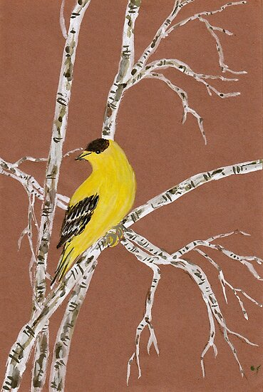 Goldfinch from Amphai by Baina Masquelier