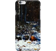 Winter Pumpkin iPhone Case/Skin