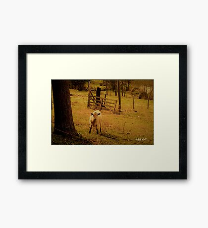 """Keeper of the Gate""... prints and products Framed Print"