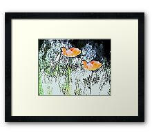 Poppies of the Field Framed Print