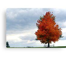 Autumn Sentinel Canvas Print