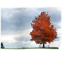 Autumn Sentinel Poster