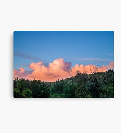 1717 sunset Canvas Print