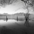 The Old Jetty, Kinloch NZ as a monochrome by Odille Esmonde-Morgan
