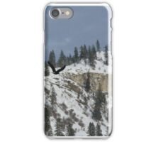 Flying the river iPhone Case/Skin
