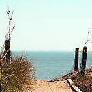 Beach-worthy by meadaura