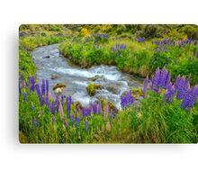 New Zealand Landscape 8 Canvas Print