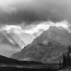 Mount Erasmus by Jim Stiles