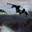 Harrier Hunters by Bob Martin