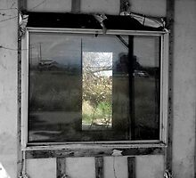 Looking In...Looking Through by trueblvr
