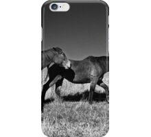 Pair iPhone Case/Skin