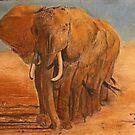Eelephants in formation by David M Scott