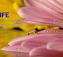 Life by Dipali S