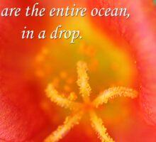 Drop in the ocean Sticker