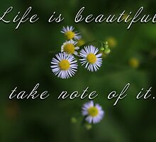 Life is beautiful by Dipali S