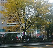 Autumn In New York by RobynLee
