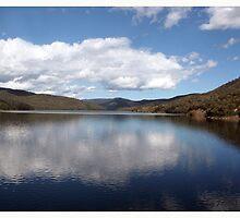 Upper Yarra Dam by WendyJC