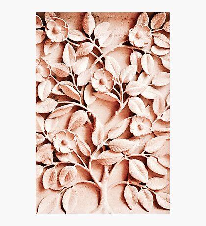 Flower & Leaf Stone Sculpture - Notre Dame Photographic Print