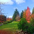 Autumn in Vancouver BC, Canada 44 by Priscilla Turner