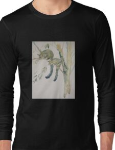 Brushtail Possums Long Sleeve T-Shirt