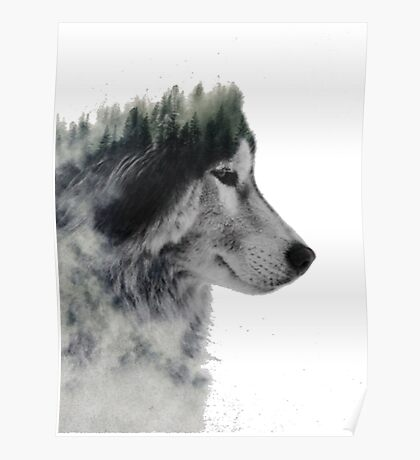 loup nature Poster