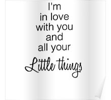 One Direction's Little Things Poster