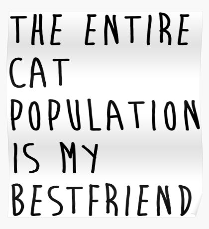 The Entire Cat Population Is My Bestfriend Cat Shirt Funny Poster