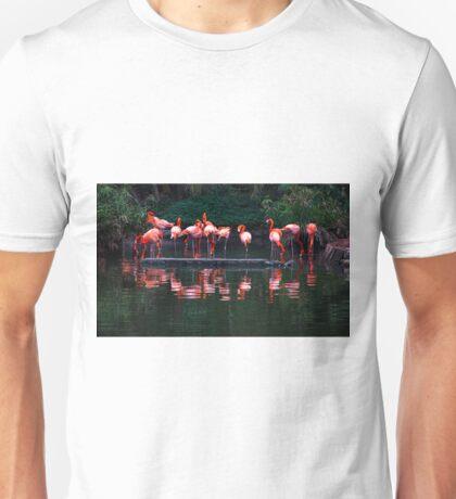 Pink Pelicans  Unisex T-Shirt