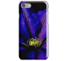 Beauty in the Night iPhone Case/Skin