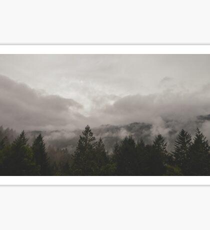 misty trees landscape Sticker