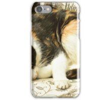 Sleeping Cat. iPhone Case/Skin