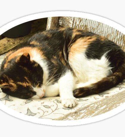 Sleeping Cat. Sticker