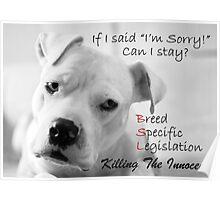 """If I Said """"I'm Sorry!"""" Poster"""