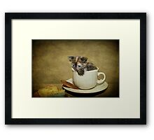 Having a 'Cat'puccino on the way to 'Cat'mando  Framed Print