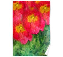 Poppies in Rembrance Poster