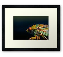 Hairy Framed Print