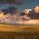 poggio covili by Matt Bishop