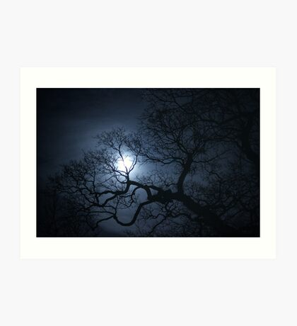 Moon Through The Trees Art Print