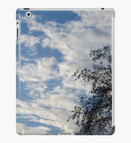 In that quiet Earth - At sunset iPad Case/Skin