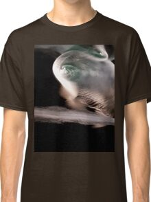 The tunnel by Liz H Lovell Classic T-Shirt
