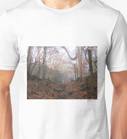Image thirty Unisex T-Shirt