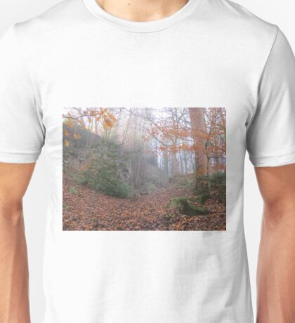 Image thirty three Unisex T-Shirt