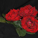 3 Red Roses by julie anne  grattan