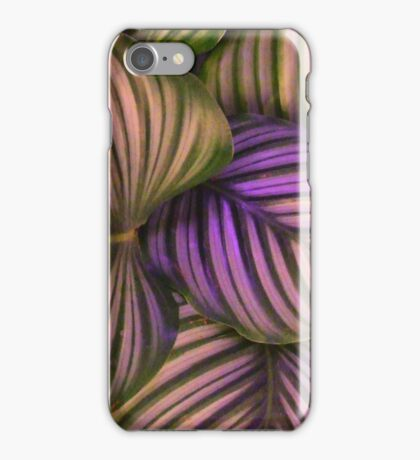 green bed iPhone Case/Skin
