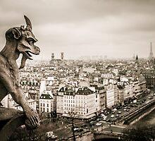 Gargoyles of Notre-Dame by Gavin Poh