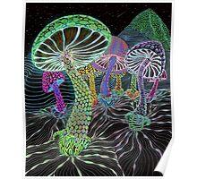 The mushroom valley Poster