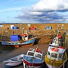 The Lilliput Harbour, Fethard on Sea, Co. Wexford, Ireland by David Carton