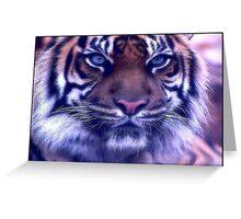 C.E. Blue Eyed Tiger Portrait Print Greeting Card