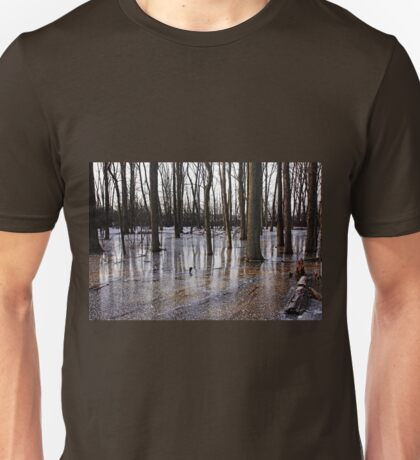 Iced Pond Unisex T-Shirt