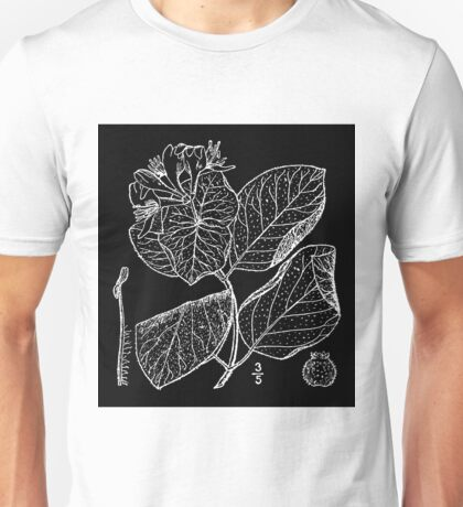 Britton And Brown Illustrated flora of the northern states and Canada 0939 Lonicera hirsuta BB 1913 Unisex T-Shirt